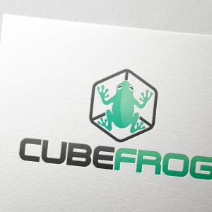 CubeFrog01